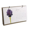 WEB calendar june