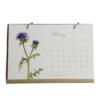 WEB calendar may